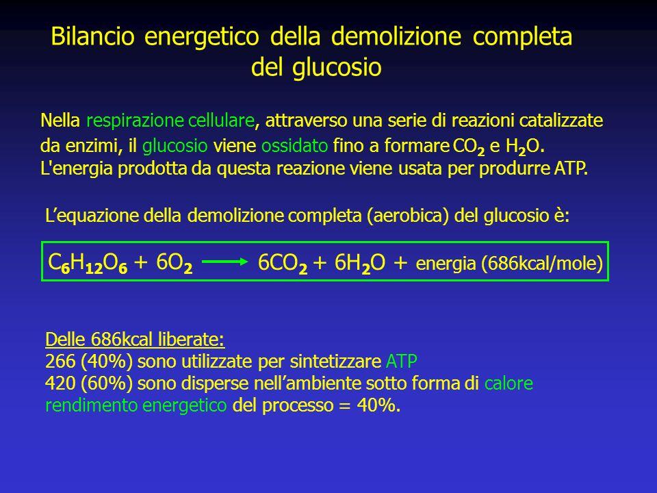 Bilancio energetico della demolizione completa