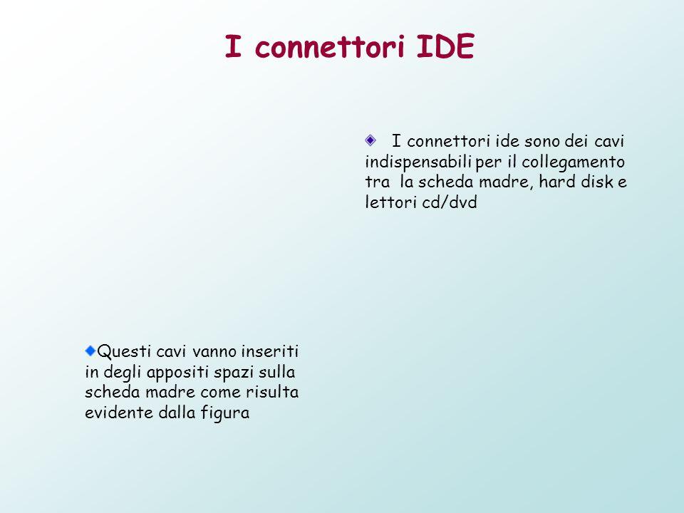 I connettori IDE I connettori ide sono dei cavi indispensabili per il collegamento tra la scheda madre, hard disk e lettori cd/dvd.