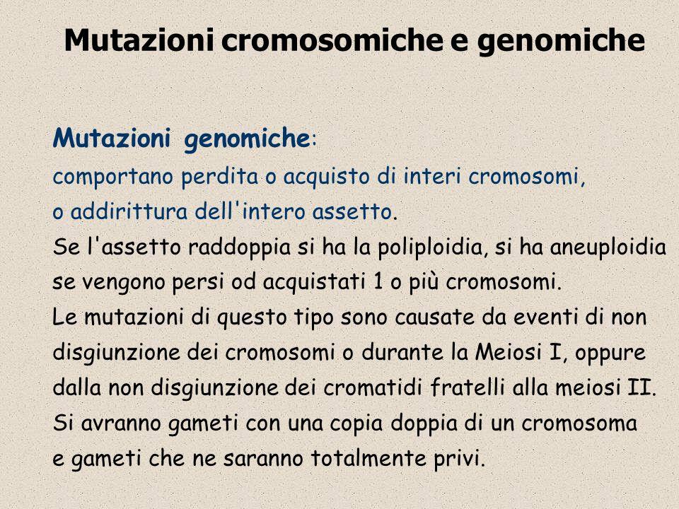 Mutazioni cromosomiche e genomiche