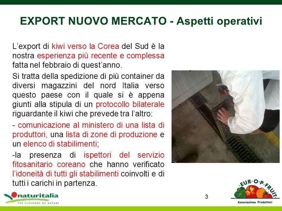 EXPORT NUOVO MERCATO - Aspetti operativi