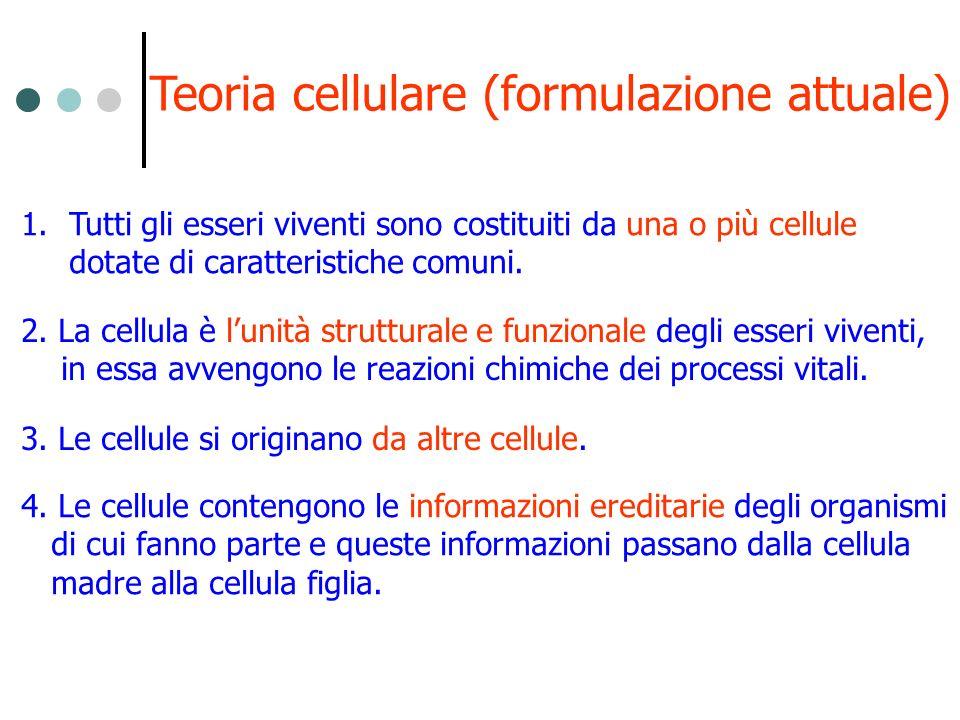 Teoria cellulare (formulazione attuale)