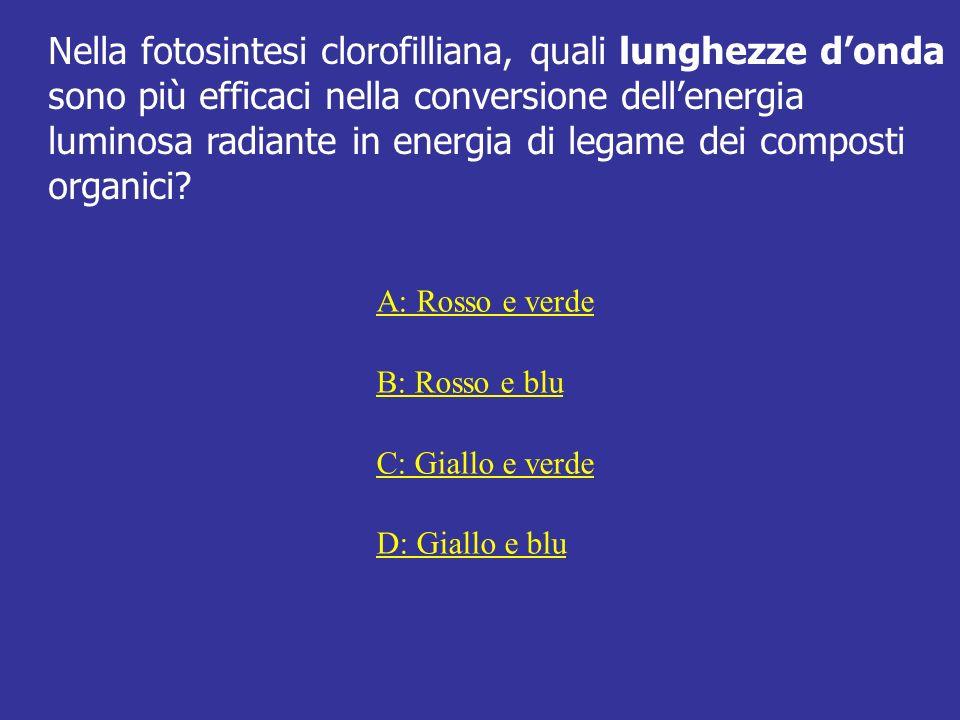 Nella fotosintesi clorofilliana, quali lunghezze d'onda