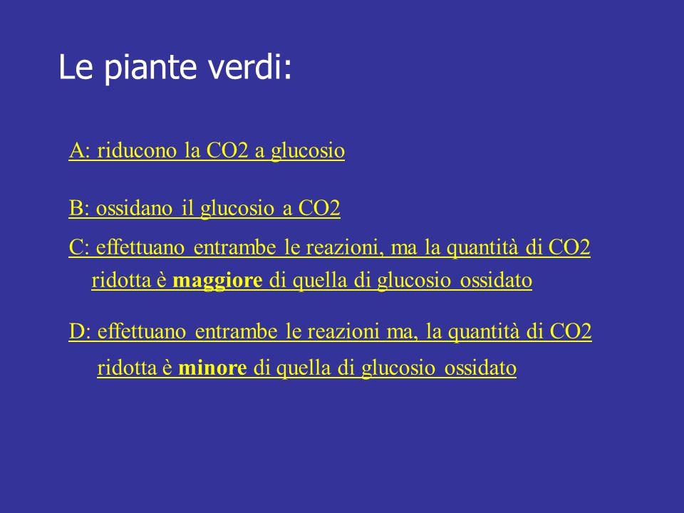 Le piante verdi: A: riducono la CO2 a glucosio