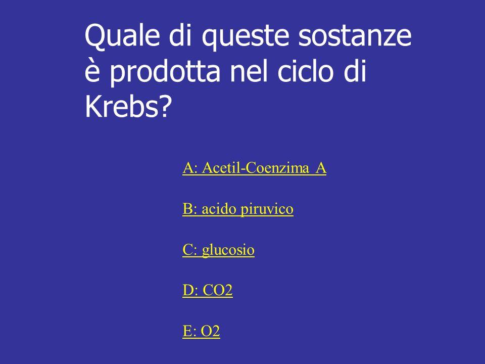 Quale di queste sostanze è prodotta nel ciclo di Krebs