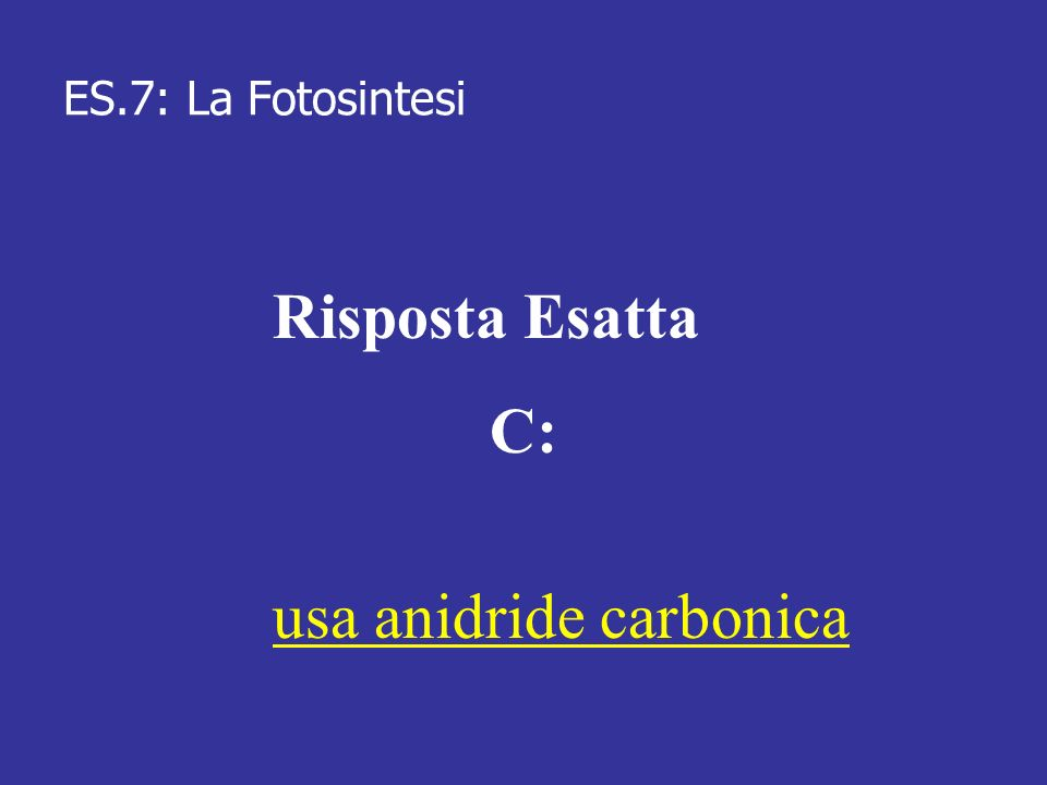 usa anidride carbonica