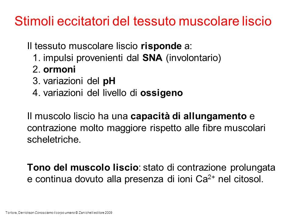Stimoli eccitatori del tessuto muscolare liscio