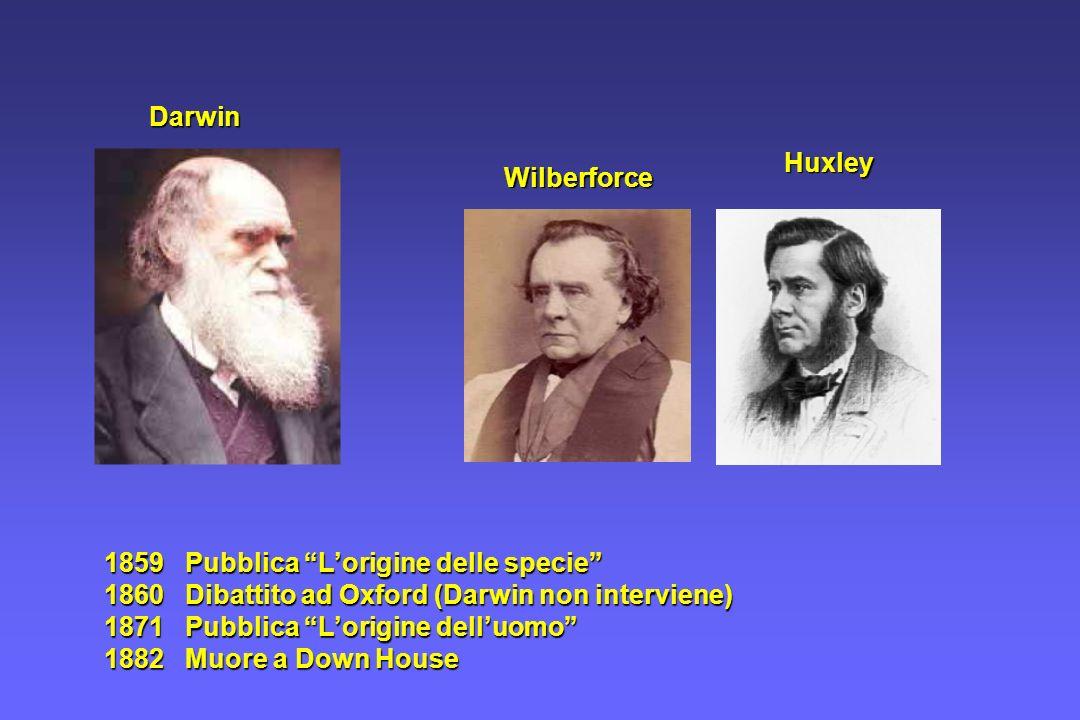 Darwin Huxley. Wilberforce. 1859 Pubblica L'origine delle specie 1860 Dibattito ad Oxford (Darwin non interviene)