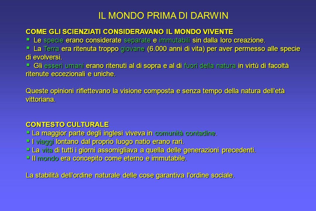 IL MONDO PRIMA DI DARWIN