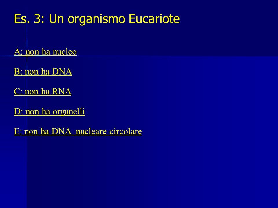 Es. 3: Un organismo Eucariote
