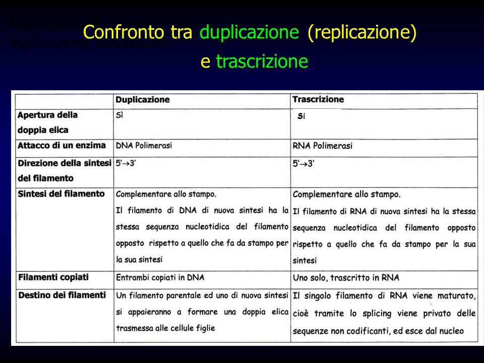 Confronto tra duplicazione (replicazione)