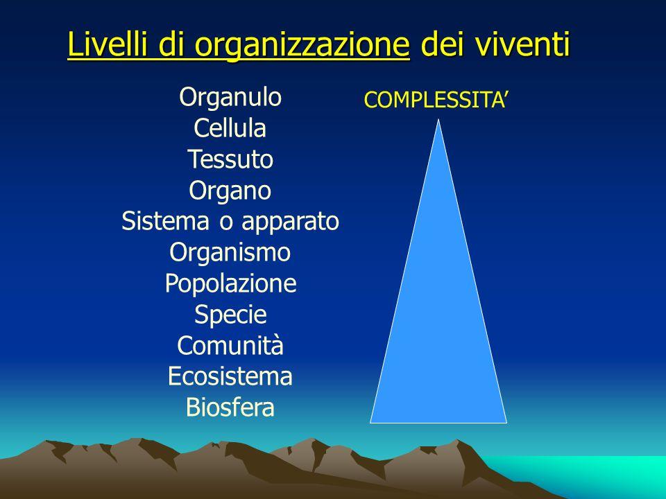 Livelli di organizzazione dei viventi