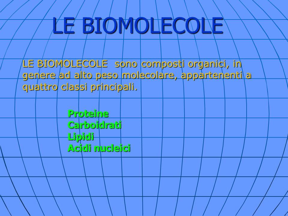 LE BIOMOLECOLE LE BIOMOLECOLE sono composti organici, in genere ad alto peso molecolare, appartenenti a.