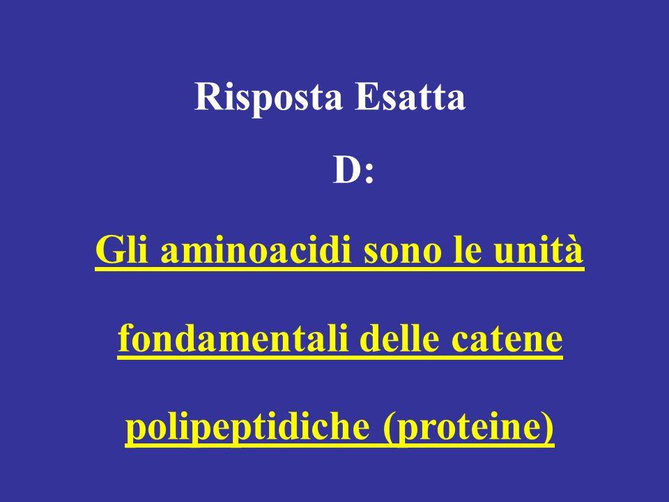 Risposta Esatta D: Gli aminoacidi sono le unità fondamentali delle catene polipeptidiche (proteine)