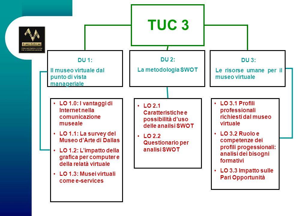TUC 3 DU 1: Il museo virtuale dal punto di vista manageriale DU 2: