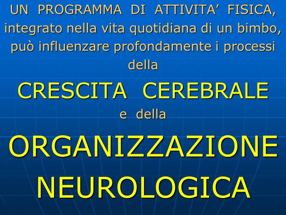 ORGANIZZAZIONE NEUROLOGICA CRESCITA CEREBRALE