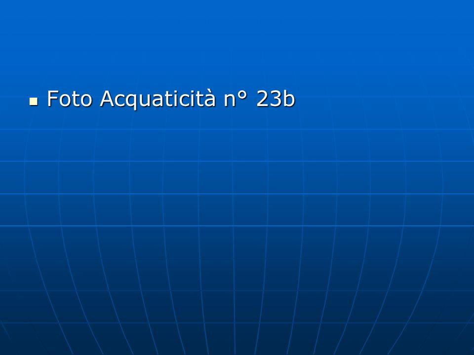 Foto Acquaticità n° 23b