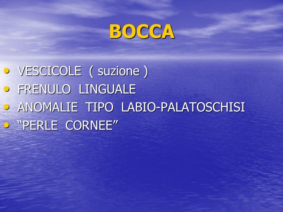 BOCCA VESCICOLE ( suzione ) FRENULO LINGUALE
