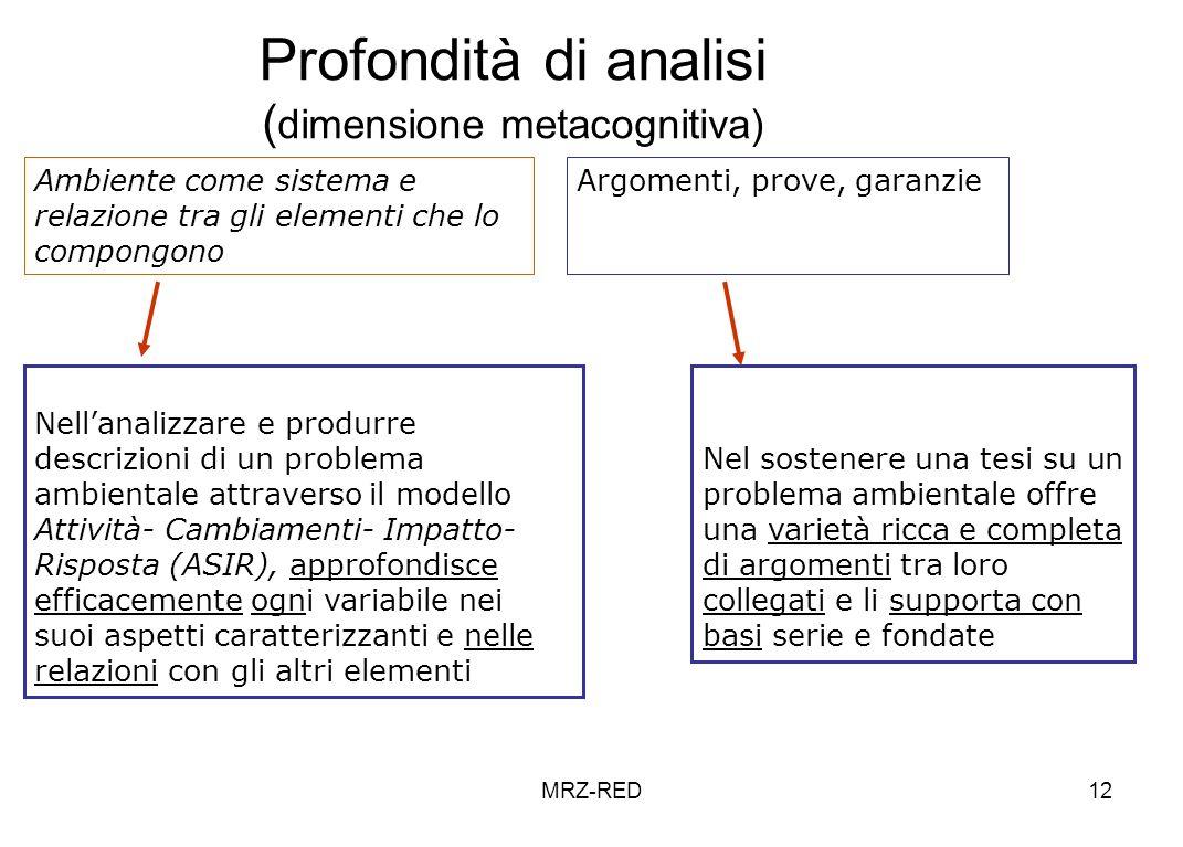 Profondità di analisi (dimensione metacognitiva)