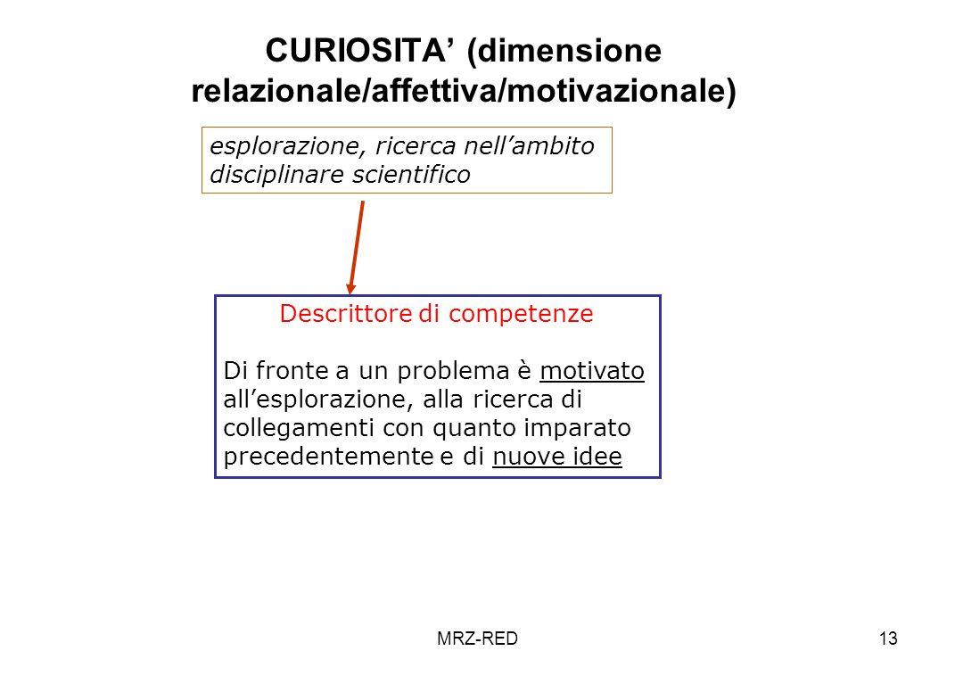 CURIOSITA' (dimensione relazionale/affettiva/motivazionale)