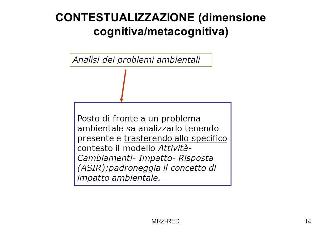 CONTESTUALIZZAZIONE (dimensione cognitiva/metacognitiva)