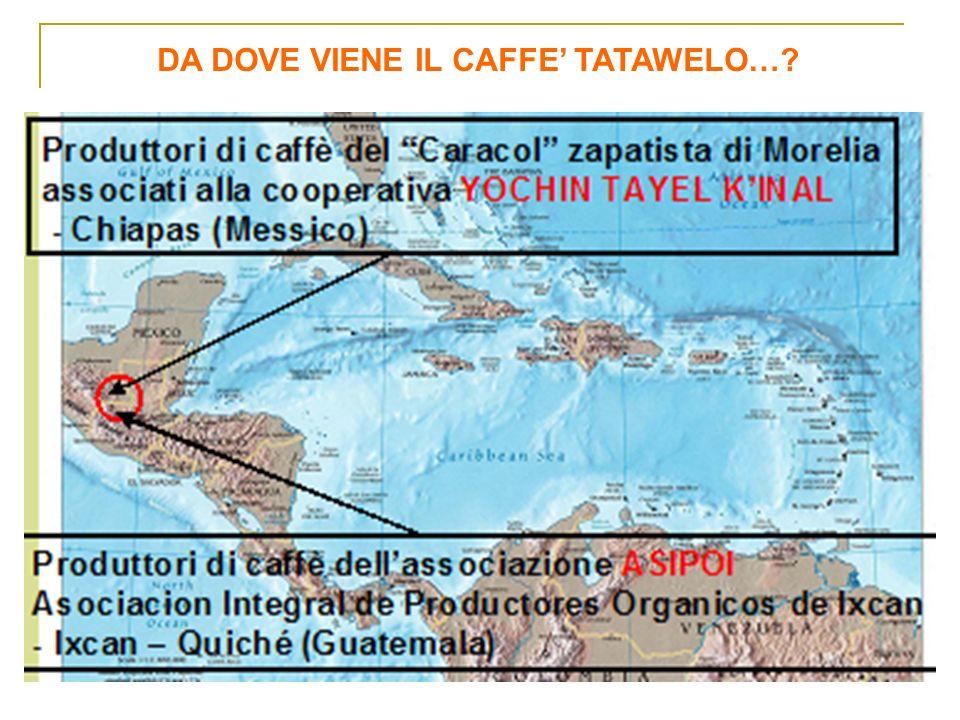DA DOVE VIENE IL CAFFE' TATAWELO…