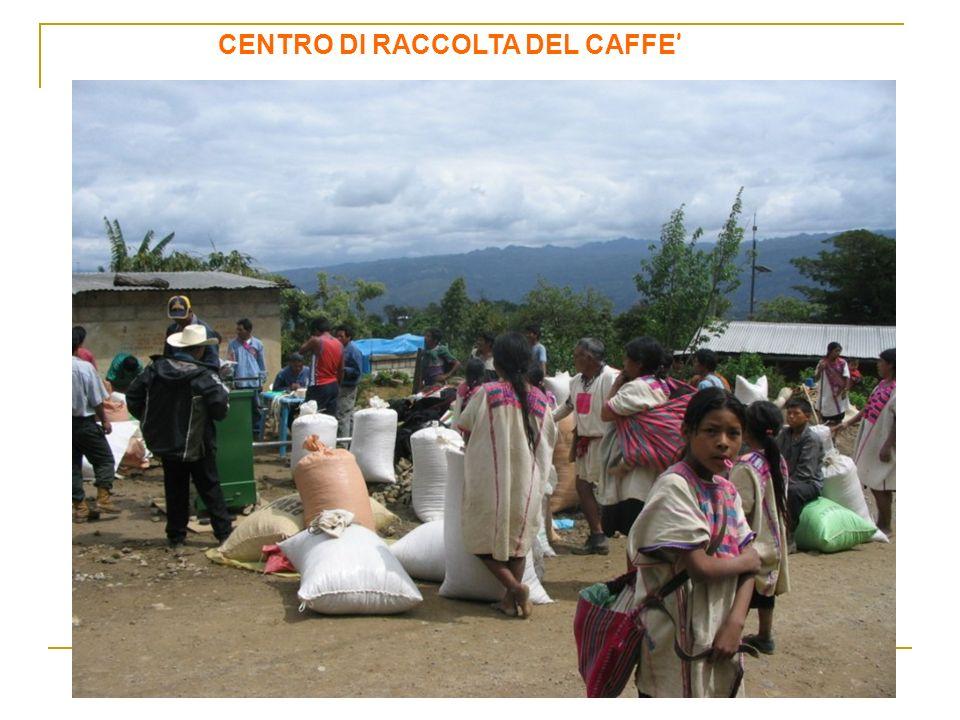 CENTRO DI RACCOLTA DEL CAFFE'