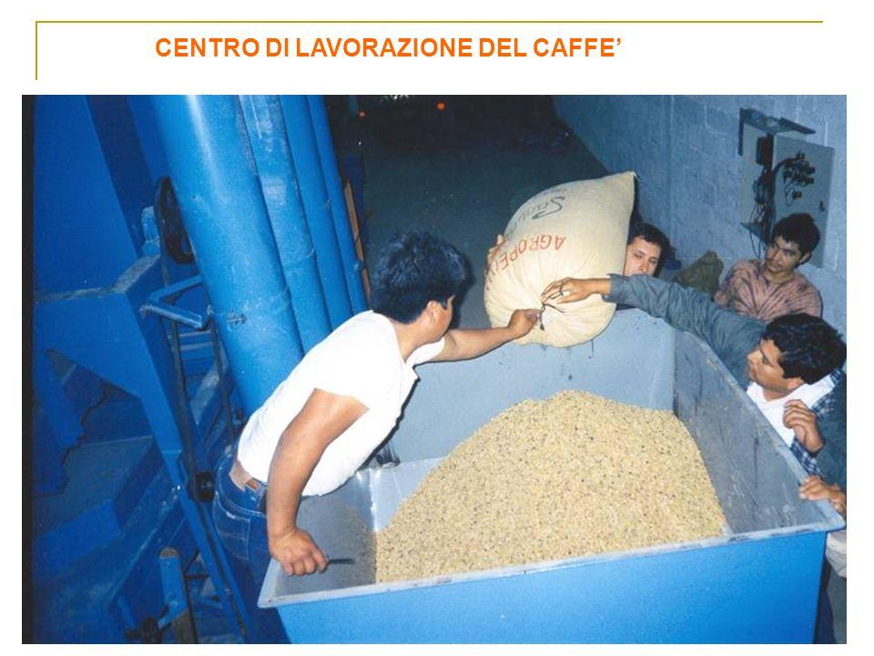 CENTRO DI LAVORAZIONE DEL CAFFE'