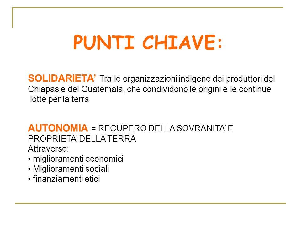 PUNTI CHIAVE: SOLIDARIETA' Tra le organizzazioni indigene dei produttori del. Chiapas e del Guatemala, che condividono le origini e le continue.