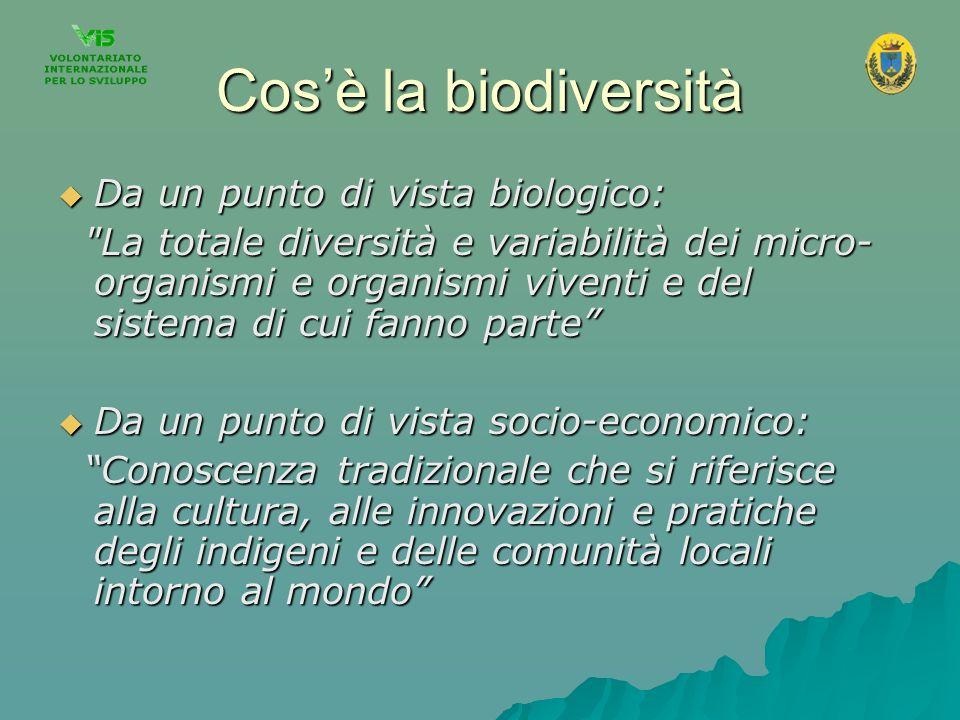 Cos'è la biodiversità Da un punto di vista biologico: