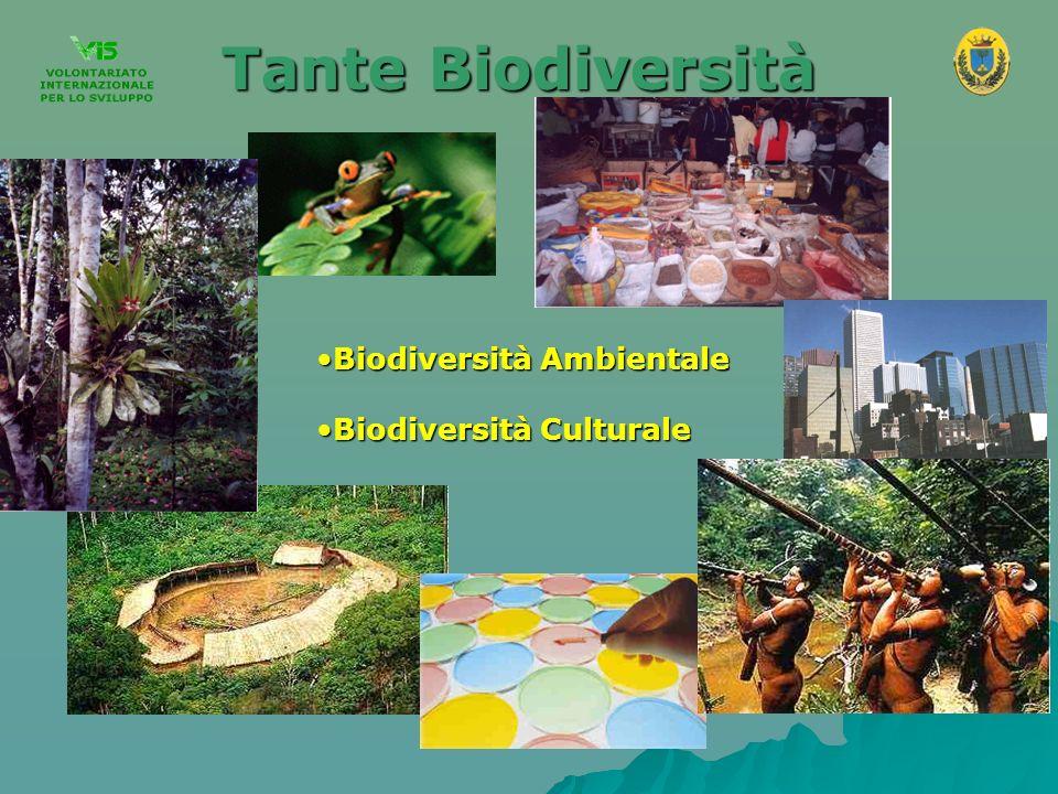Tante Biodiversità Biodiversità Ambientale Biodiversità Culturale 4