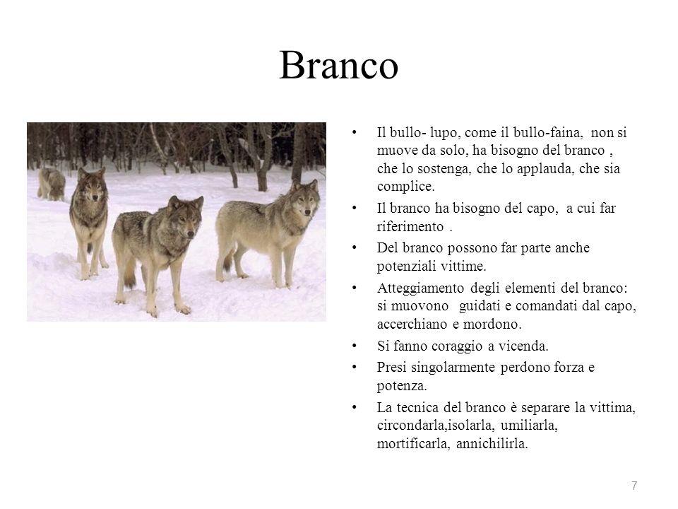 Branco Il bullo- lupo, come il bullo-faina, non si muove da solo, ha bisogno del branco , che lo sostenga, che lo applauda, che sia complice.