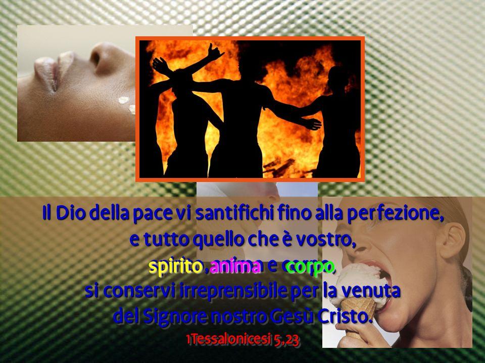 Il Dio della pace vi santifichi fino alla perfezione,