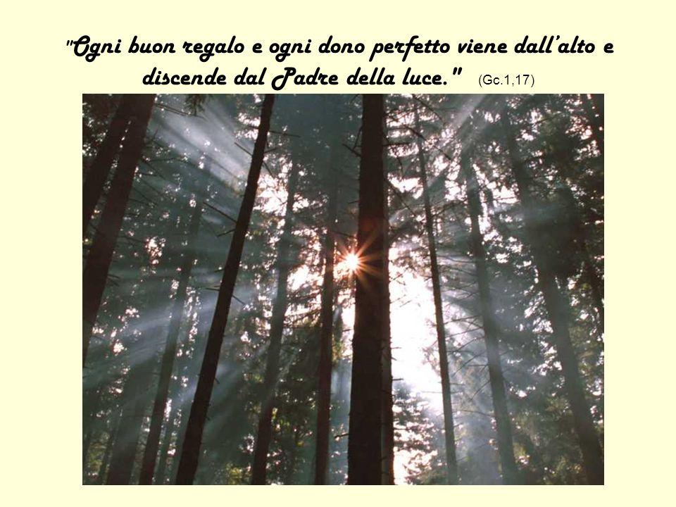 Ogni buon regalo e ogni dono perfetto viene dall'alto e discende dal Padre della luce. (Gc.1,17)