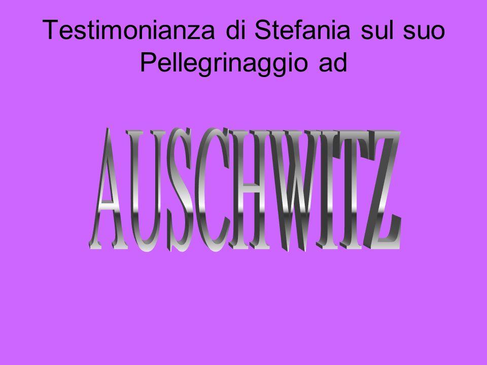 Testimonianza di Stefania sul suo Pellegrinaggio ad