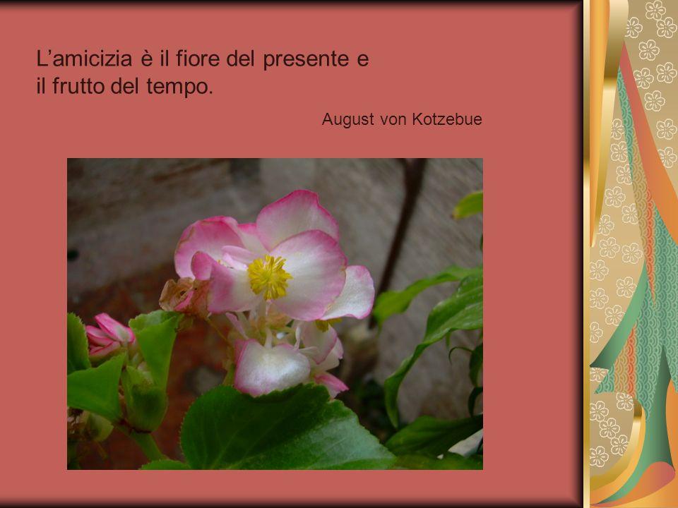 L'amicizia è il fiore del presente e il frutto del tempo.