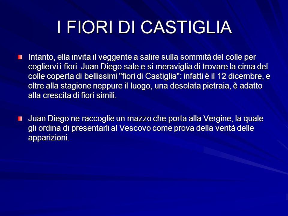 I FIORI DI CASTIGLIA