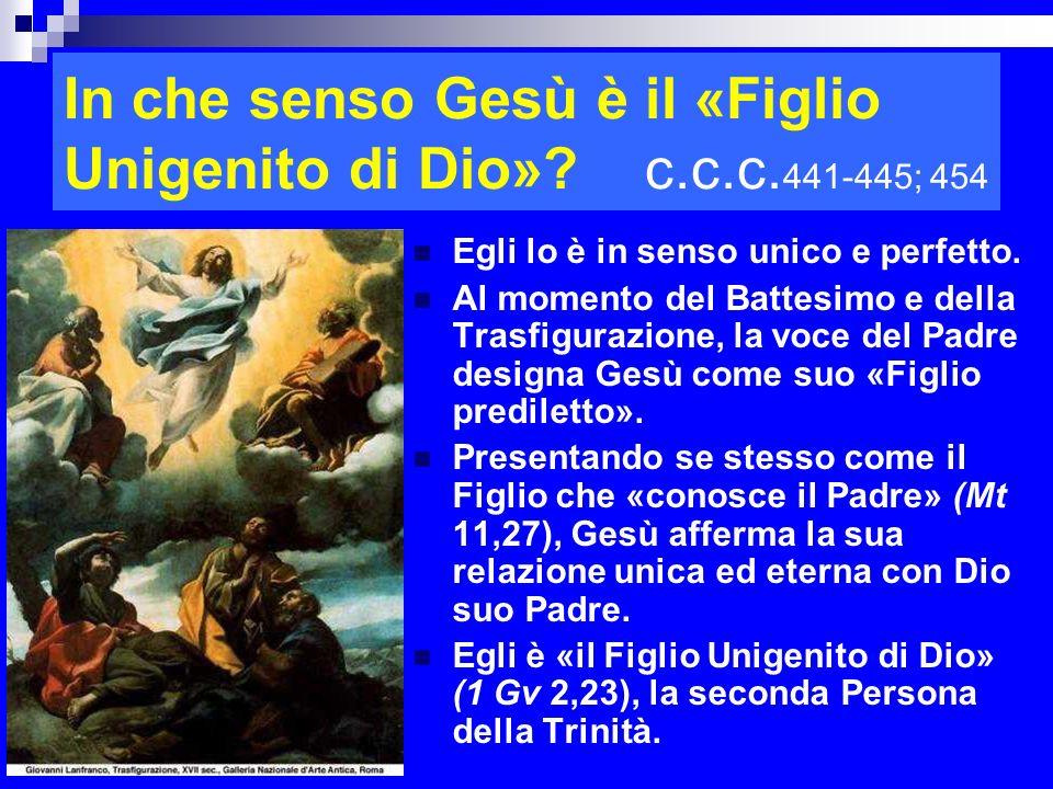In che senso Gesù è il «Figlio Unigenito di Dio» c.c.c.441-445; 454