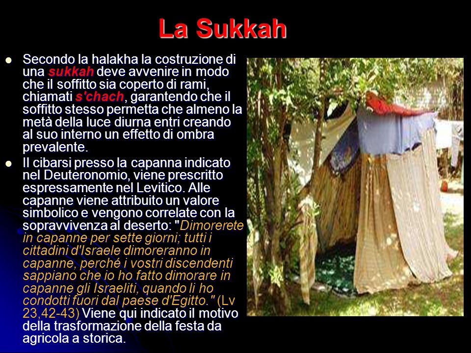 La Sukkah