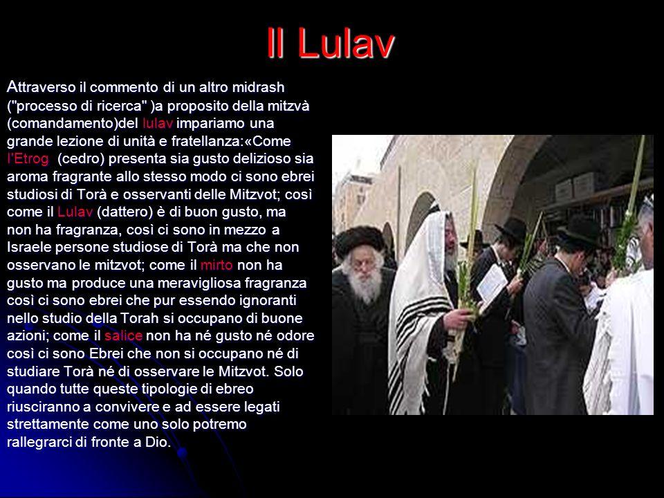Il Lulav