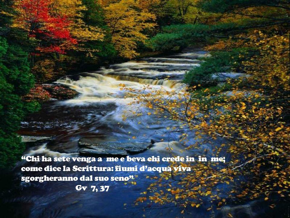 Chi ha sete venga a me e beva chi crede in in me; come dice la Scrittura: fiumi d'acqua viva sgorgheranno dal suo seno