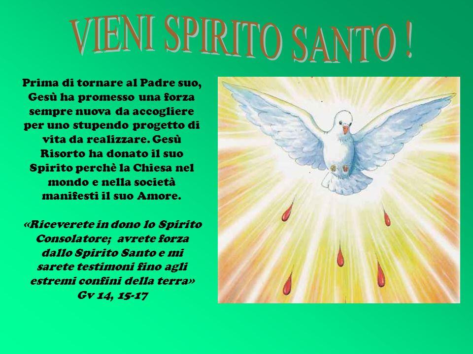 VIENI SPIRITO SANTO !