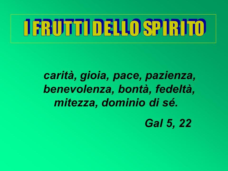 I F R U T T I D E L L O SP I R I TOcarità, gioia, pace, pazienza, benevolenza, bontà, fedeltà, mitezza, dominio di sé.