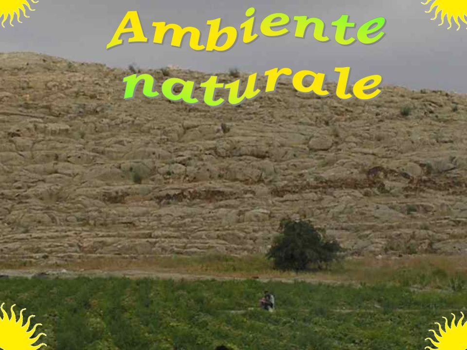 Ambiente naturale