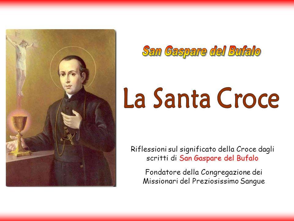 Fondatore della Congregazione dei Missionari del Preziosissimo Sangue