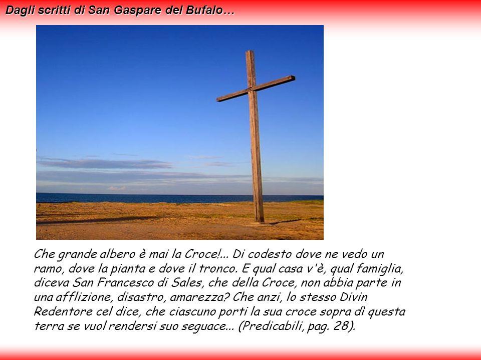 Dagli scritti di San Gaspare del Bufalo…