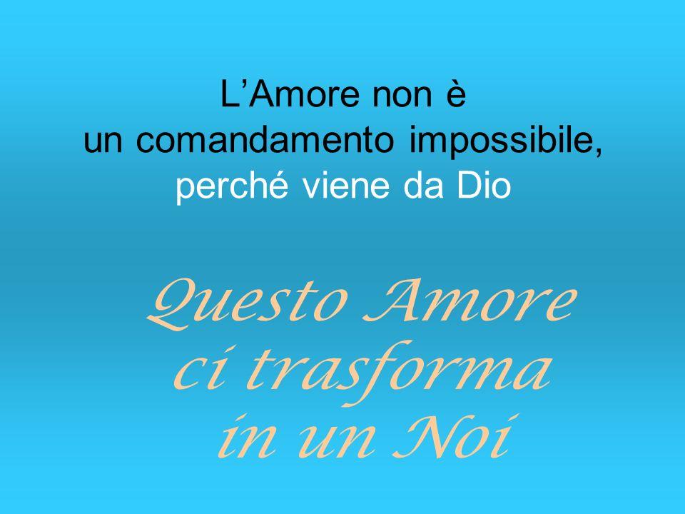 L'Amore non è un comandamento impossibile, perché viene da Dio