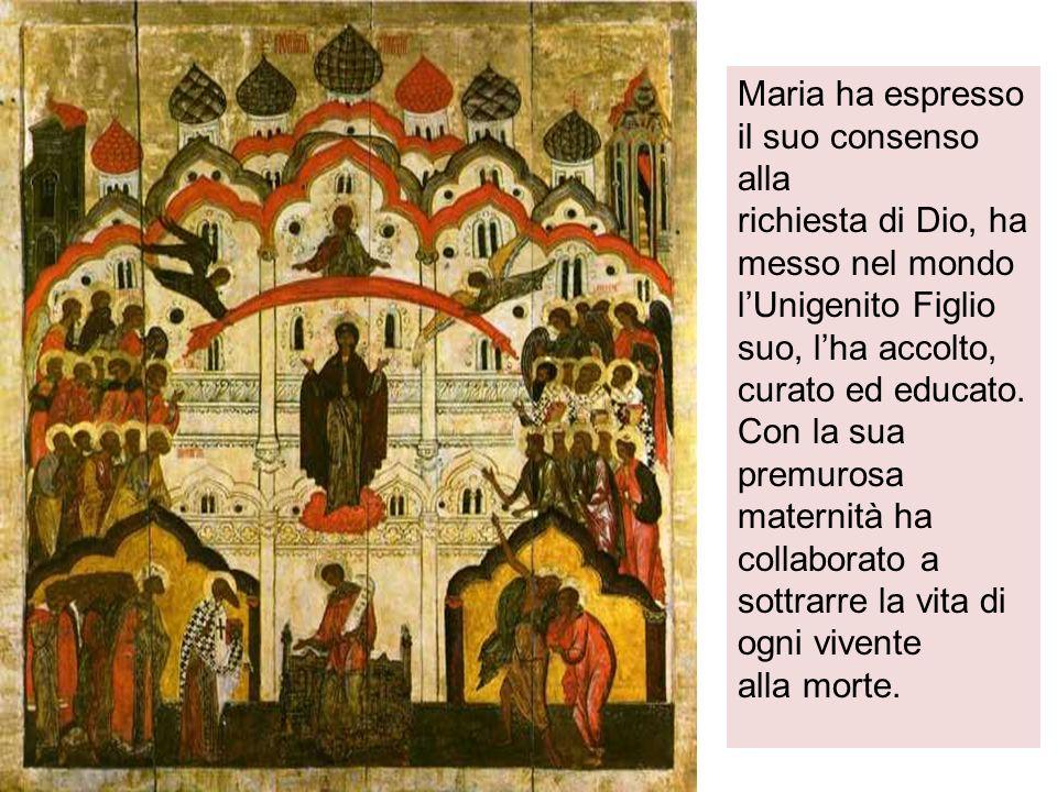 Maria ha espresso il suo consenso alla