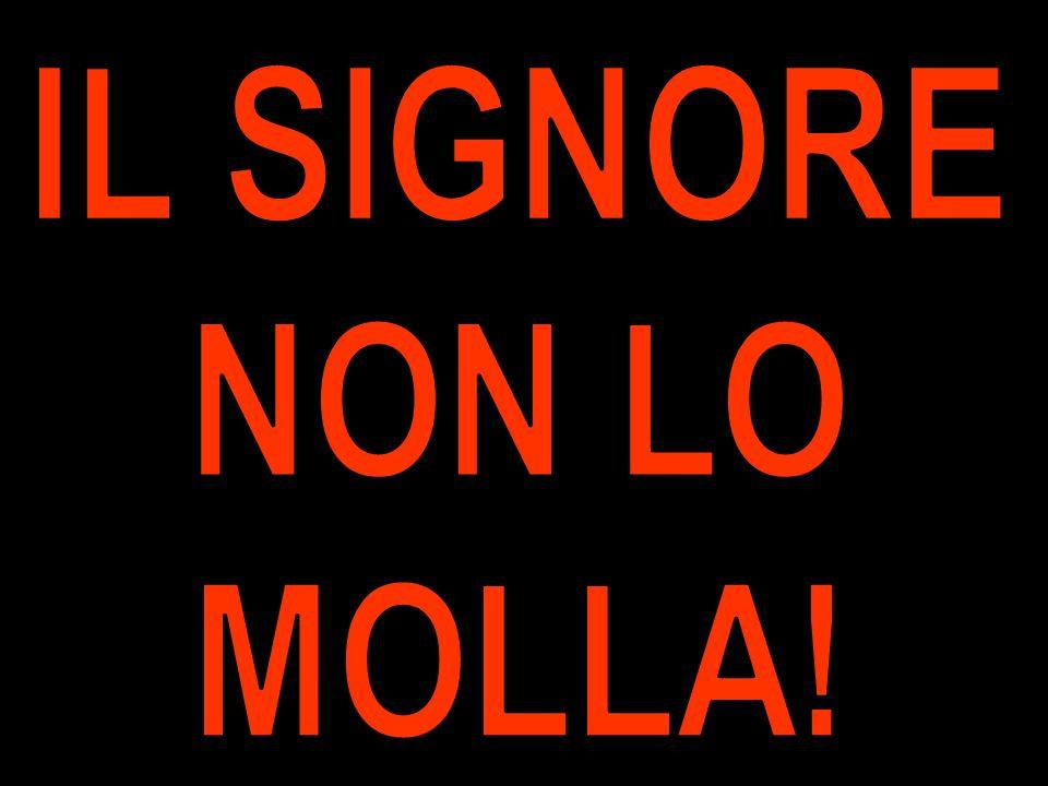 IL SIGNORE NON LO MOLLA!