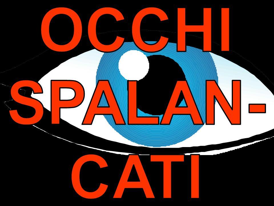OCCHI SPALAN- CATI