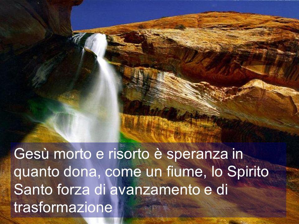 Gesù morto e risorto è speranza in quanto dona, come un fiume, lo Spirito Santo forza di avanzamento e di trasformazione
